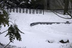 winterigg1_02