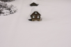 winterigg_02