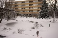 winterigg_08