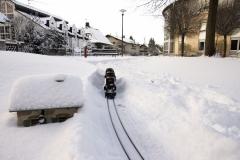 winterigg_14